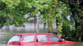 Buyer Beware: Avoid Buying a Flood-Damaged Car